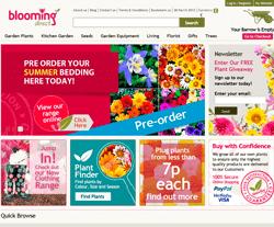 Blooming Direct Voucher Code 2018