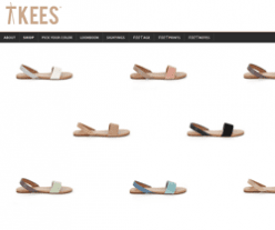 TKEES Coupon 2018