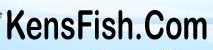 Kensfish Promo Codes & Deals