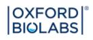 Oxford Biolabs Discount Codes & Deals