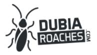 Dubia Roaches Promo Codes & Deals
