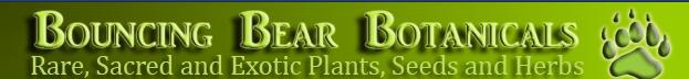 Bouncing Bear Botanicals coupons