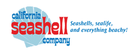 California Seashell coupons