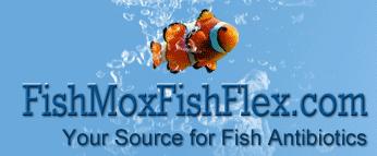 FishMoxFishFlex coupons