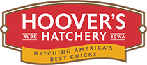 Hoover's Hatchery coupon codes