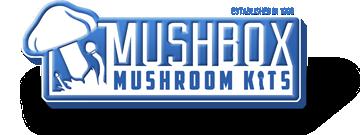 Mushbox Coupon