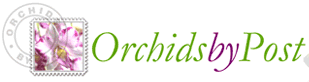 Orchids by Post Discount Code