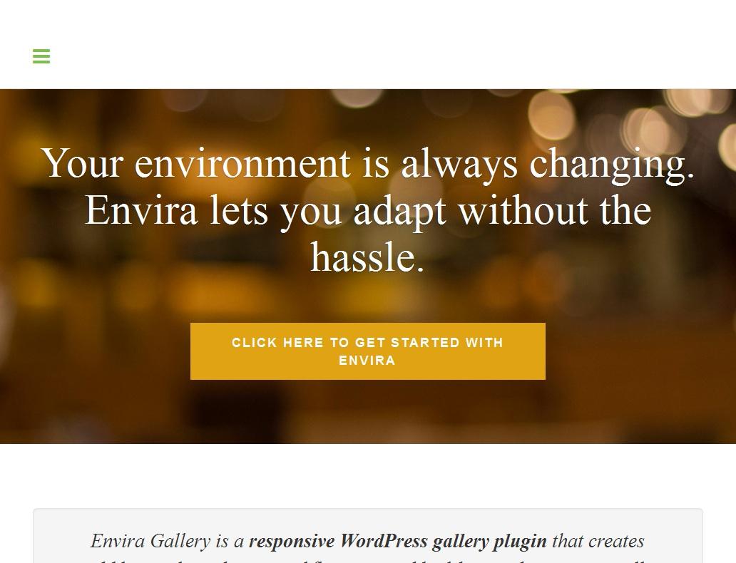 Envira Gallery Coupon 2018