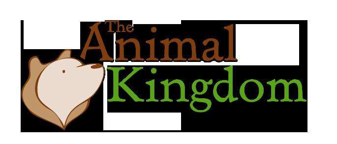 The Animal Kingdom Promo Codes & Deals